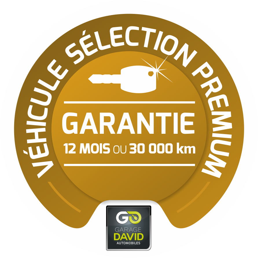 Garage david voiture occasion saint fulgent vente auto for Garage bien etre auto saint gratien